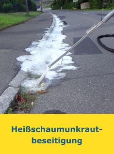 Heißschaumunkrautbeseitigung_Start_Leistungen